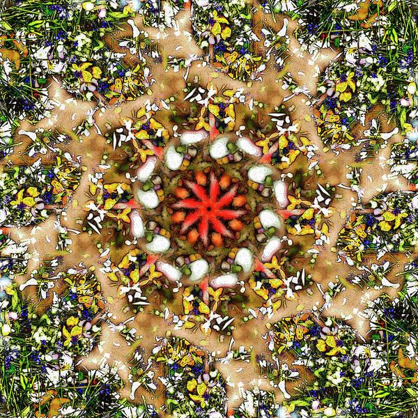 Digital Art - Lakeside Flowers by Frans Blok