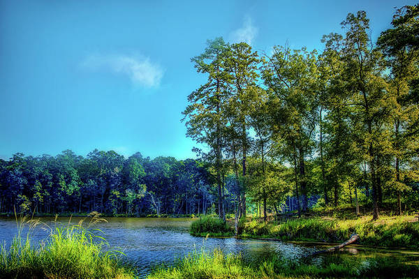 Photograph - Lakeside Tranquility by Barry Jones