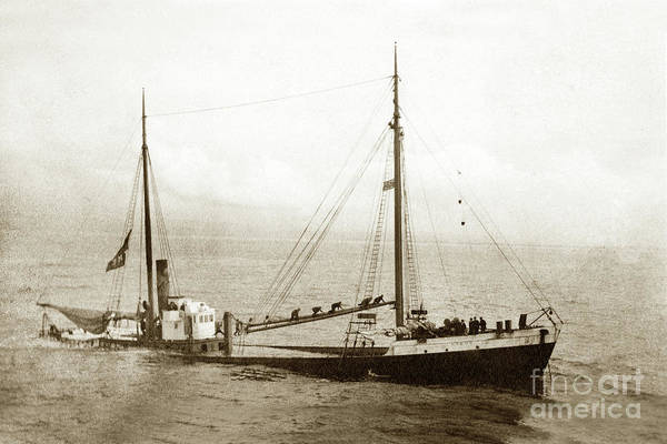 Photograph - Lakme Wooden Steam Schooner  January 19, 1911 by California Views Archives Mr Pat Hathaway Archives