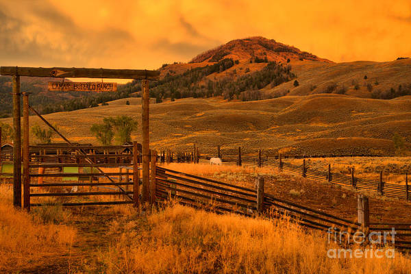 Photograph - Lamar Bison Ranch Sunset by Adam Jewell