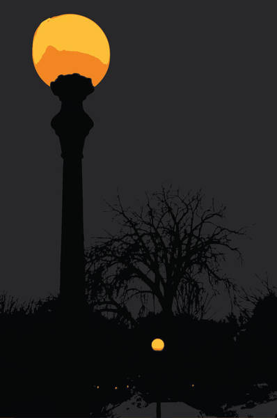 Digital Image Digital Art - Lamp At Night by Pelo Blanco Photo