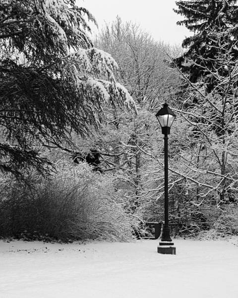 Photograph - Lamp Post In Winter - B/w by William Selander