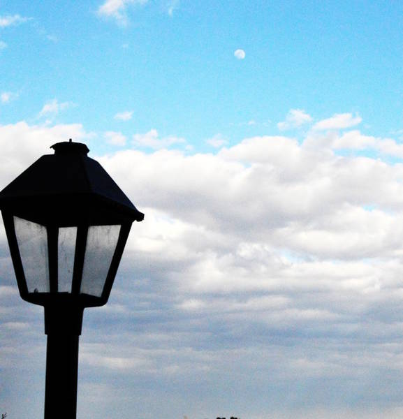 Photograph - Lamp Post by W And F Kreations