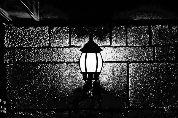 Photograph - Lamplight By Bayfront by Gina O'Brien