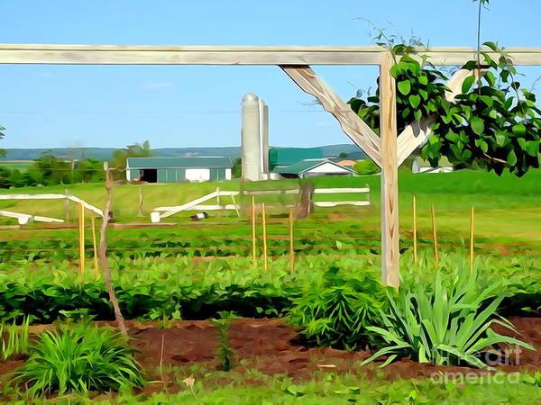 Amish Country Digital Art - Lancaster Farm by Ed Weidman