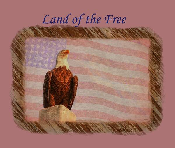 Photograph - Land Of The Free by John M Bailey