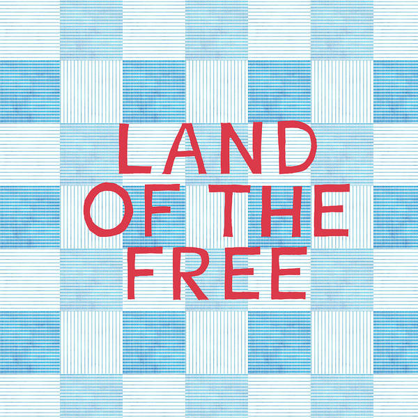 Blue And White Wall Art - Painting - Land Of The Free by Linda Woods