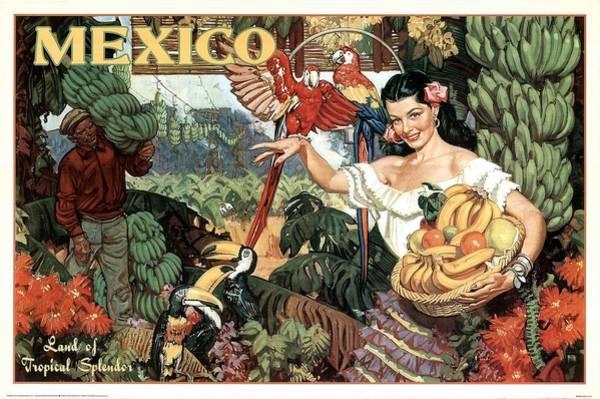 Tropical Mixed Media - Land Of Tropical Splendor, Mexico - Retro Travel Poster - Vintage Poster by Studio Grafiikka