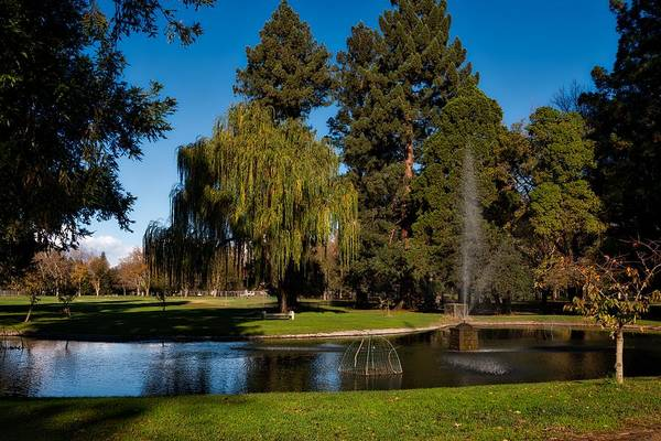 Outing Photograph - Land Park In Sacramento by Mountain Dreams