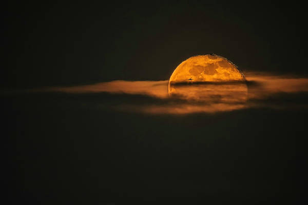 Silhoutte Photograph - Landing On Full Moon by Eduard Moldoveanu