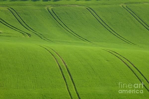Photograph - Landscape 5 by Jean Bernard Roussilhe