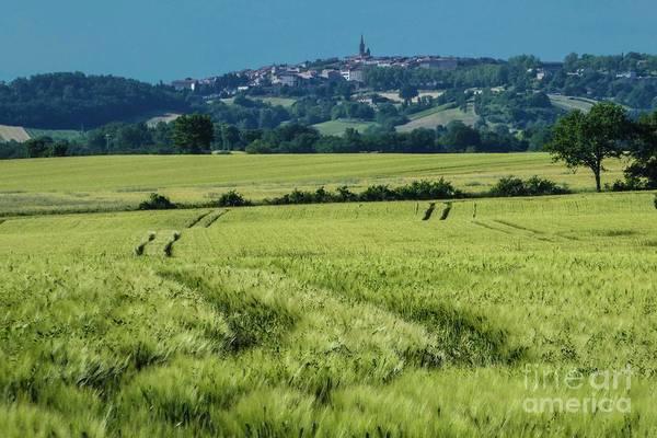 Photograph - Landscape 8 by Jean Bernard Roussilhe