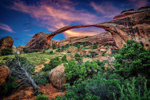 Photograph - Landscape Arch At Sunset by Michael Ash