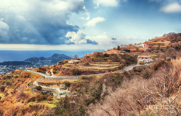 Photograph - landscape of  Ischia island in Italy by Ariadna De Raadt