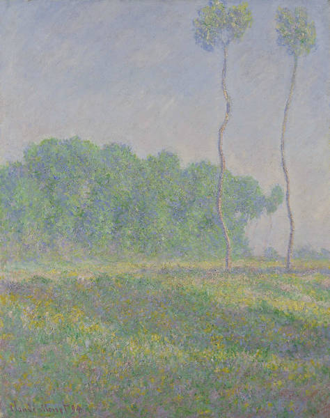 Painting - Landscape Of Spring by Claude Monet