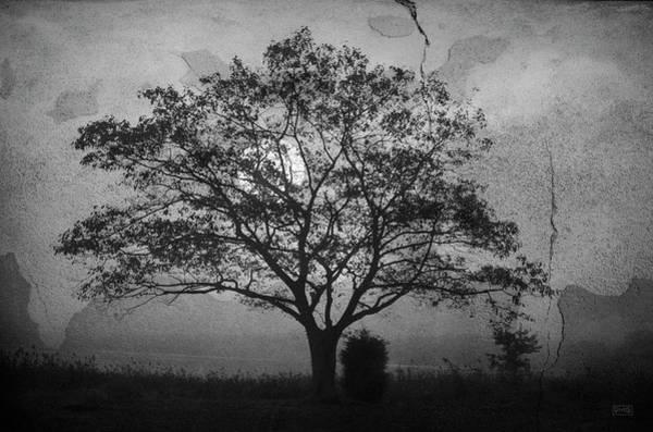Photograph - Landscape On Adobe Wall Bw by David Gordon