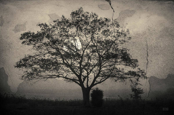 Photograph - Landscape On Adobe Wall Toned by David Gordon