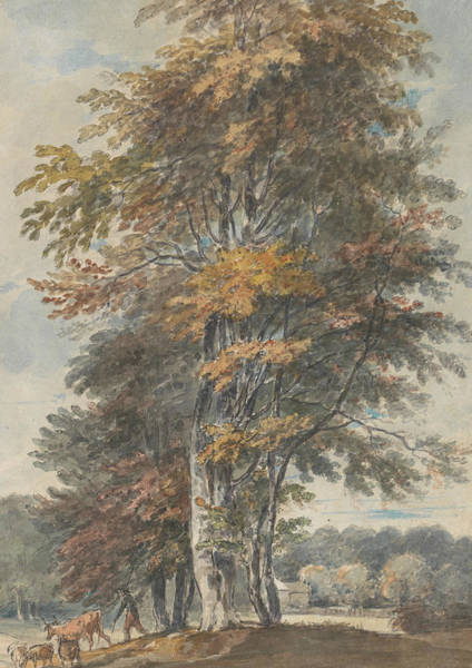 Painting - Landscape With Beech Trees And Man Driving Cattle And Sheep by Paul Sandby