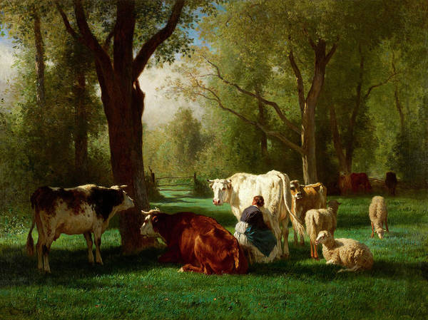 Rural Wall Art - Painting - Landscape With Cattle And Sheep by Constant Troyon