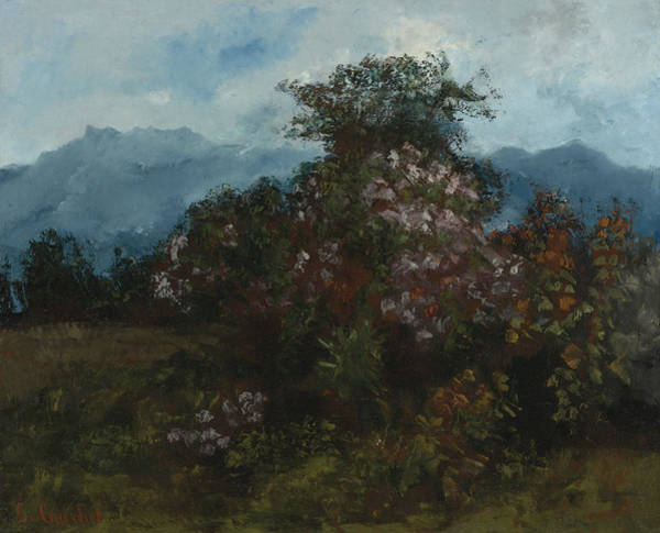 Painting - Landscape With Flowery Massiv by Gustave Courbet