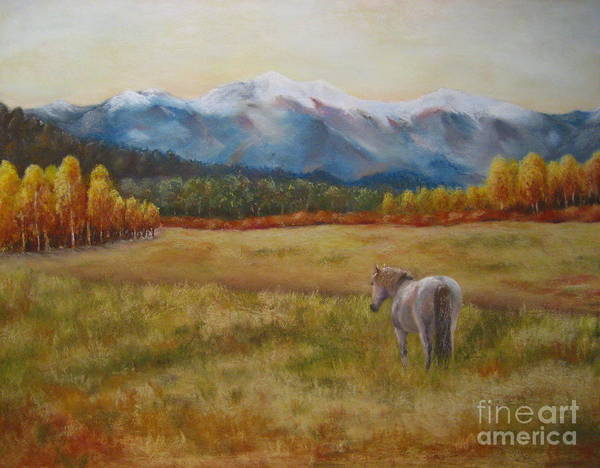 Wall Art - Painting - Landscape With Horse by Sabina Haas