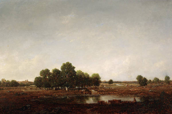 Paysage Wall Art - Painting - Landscape With Marsh by Theodore Rousseau
