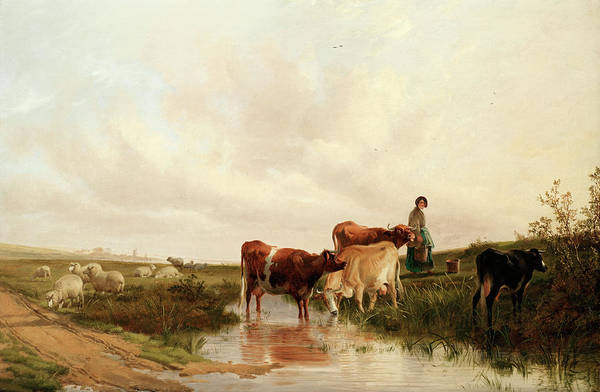 Breeding Painting - Landscape With Sheep And Cattle At A Stream by Thomas Sidney Cooper