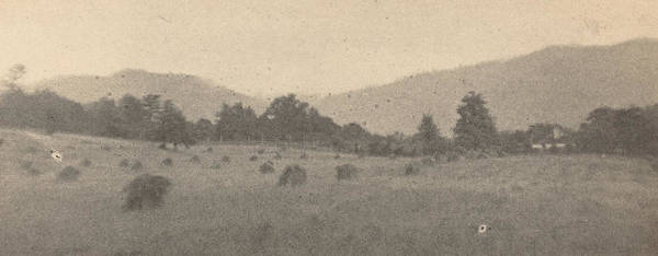 Wall Art - Photograph - Landscape With Trees And Mountains by Joseph T Keiley