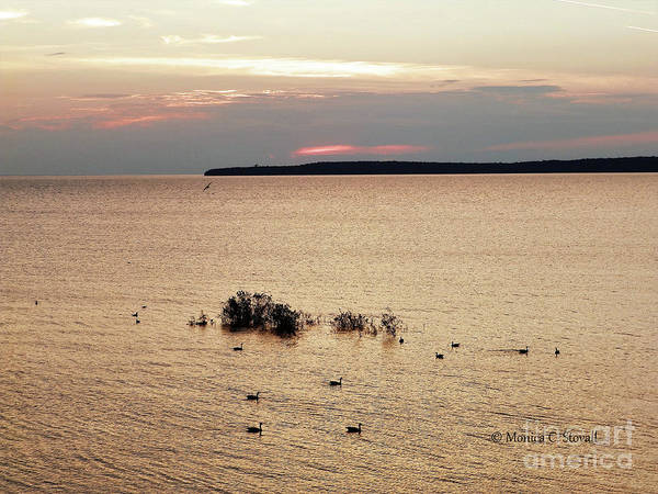 Photograph - Landscapes No. L183 by Monica C Stovall