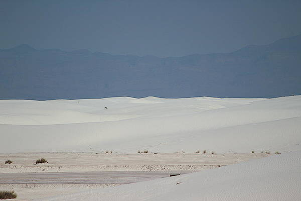 Photograph - Landscapes Of White Sands 7 by Colleen Cornelius