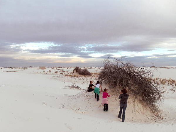 Photograph - Exploring The Dunes by Christopher Brown