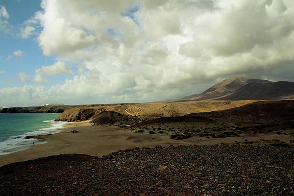 Songbird Photograph - Lanzarote by Cambion Art
