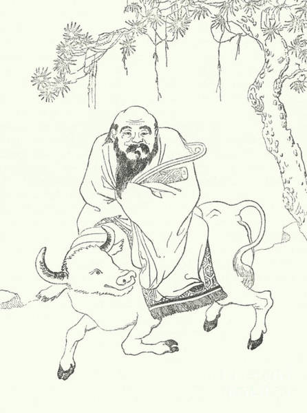 Wall Art - Drawing - Laozi by German School
