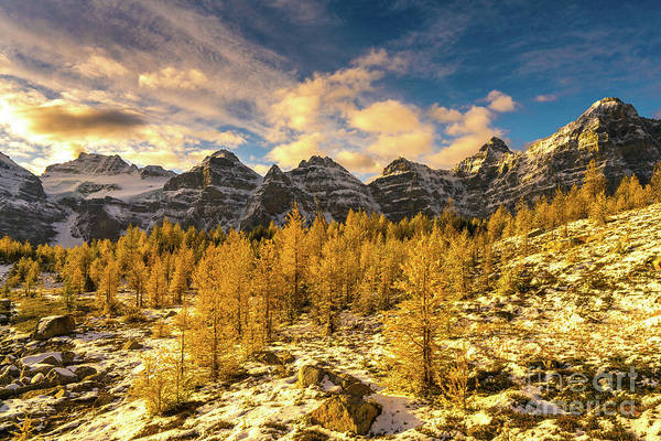 Moraine Lake Photograph - Larch Valley Golden Larches Touch Of Winter by Mike Reid