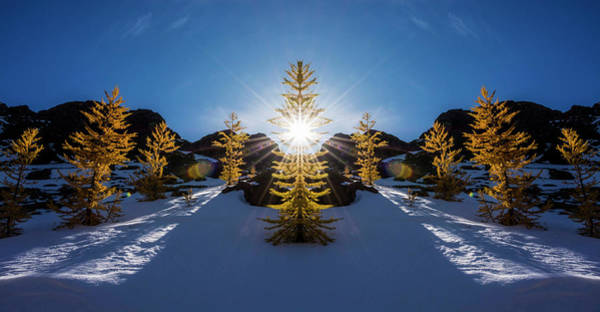 Pnw Wall Art - Photograph - Larches In Snow Reflection by Pelo Blanco Photo