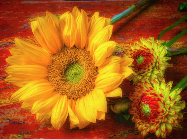 Wall Art - Photograph - Large Sunflower And Dahlias by Garry Gay
