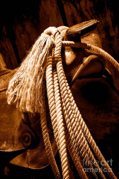 Saddle Photograph - Lariat On A Saddle - Sepia by Olivier Le Queinec