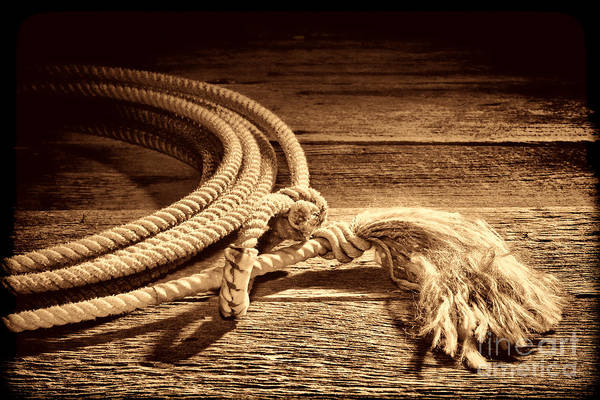 Photograph - Lasso by American West Legend By Olivier Le Queinec