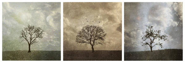 Digital Art - Last Day Of Winter Triptych by Eduardo Tavares