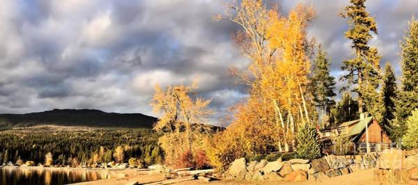 Photograph - Last Fall by Victor K
