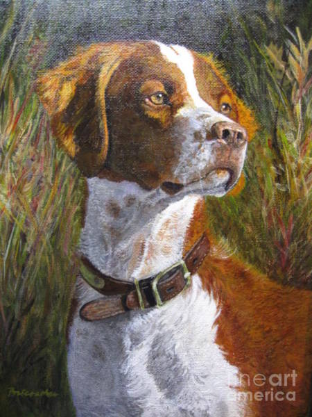 Field Spaniel Painting - Last Light by Linda Briesacher