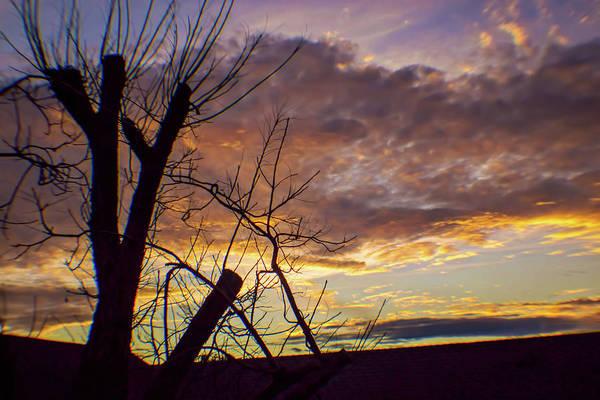 Otp Photograph - Last Light by Marshall Barth