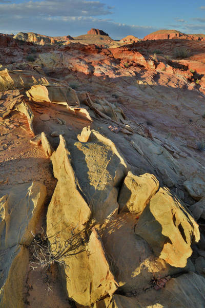 Photograph - Last Light On Sandstone Sculpture In Valley Of Fire by Ray Mathis