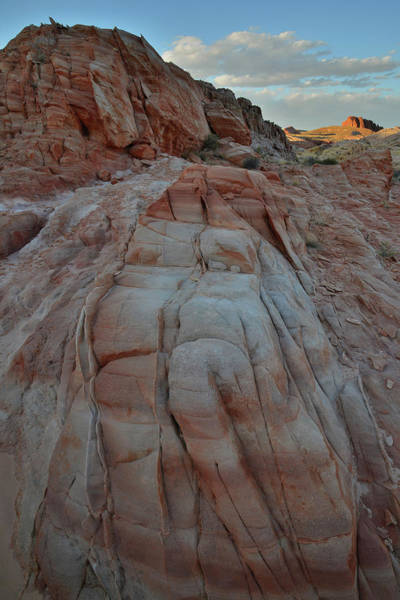 Photograph - Last Light On Valley Of Fire From Wash 3 by Ray Mathis