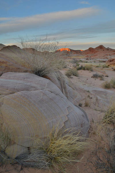 Photograph - Last Light Seen From Wash 3 In Valley Of Fire by Ray Mathis