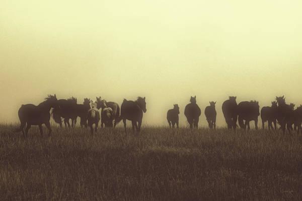Photograph - Last Run At Dusk by Amanda Smith
