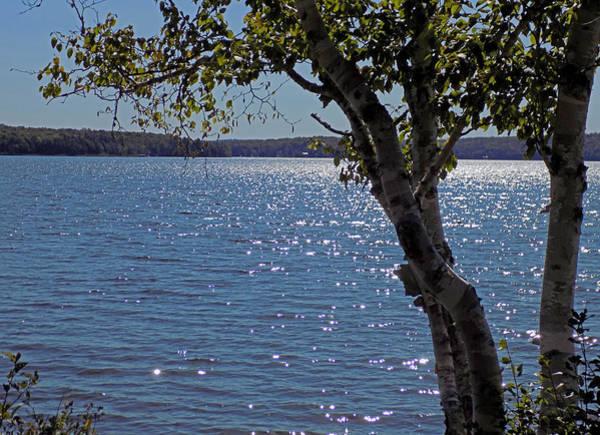 Madawaska Lake Photograph - Late Afternoon At Madawaska Lake by William Tasker