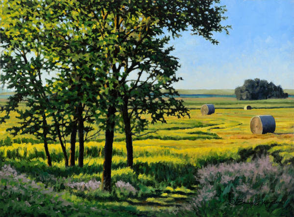 Painting - Late Afternoon Pasture by Bruce Morrison