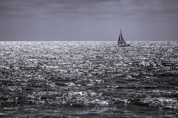 Sailboat Off The Coast At San Diego Art Print