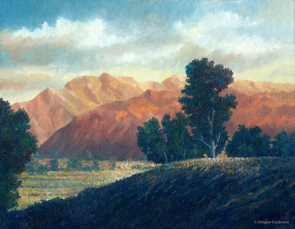 Painting - Late Afternoon View by Douglas Castleman